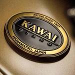 Đàn piano điện kawai - Đức Trí Music