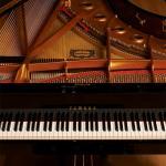 Báo giá thuê đàn piano - Đức Trí Music