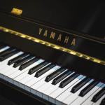Hướng dẫn chọn và mua đàn piano cơ chi tiết nhất - Đức Trí Music
