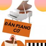 Đàn Piano Cơ Là Gì? - Đức Trí Music