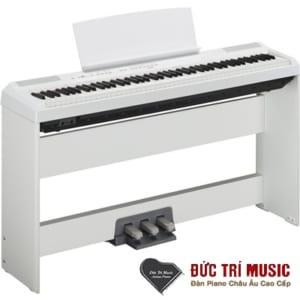 Đại lý đàn piano yamaha-14.jpg