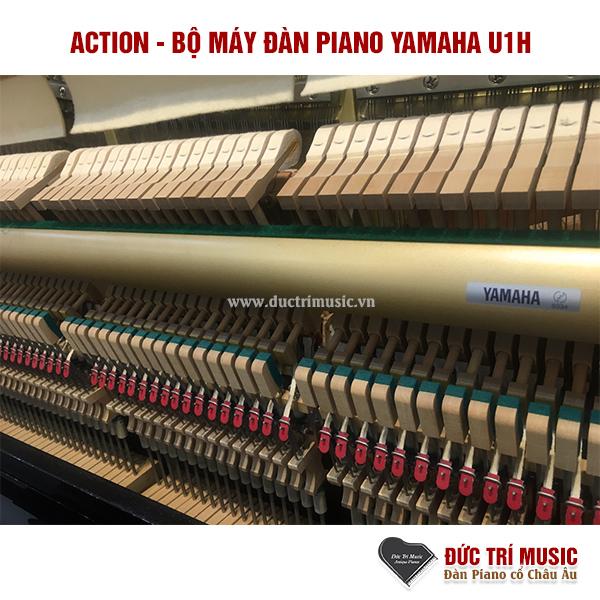 5 mẫu đàn Piano cơ bán chạy nhất 2021-2.jpg