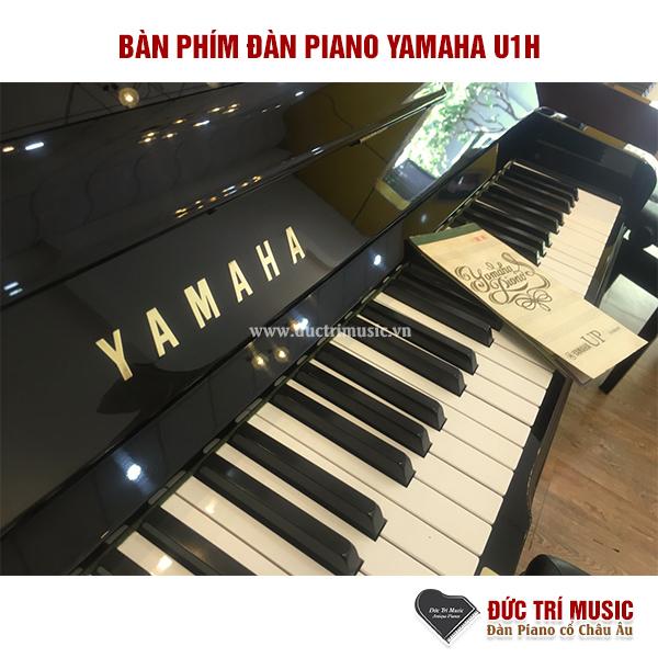 5 mẫu đàn Piano cơ bán chạy nhất 2021-3.jpg