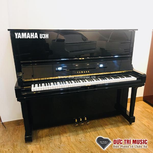 Mua đàn piano cơ cho người mới tập-3.jpg