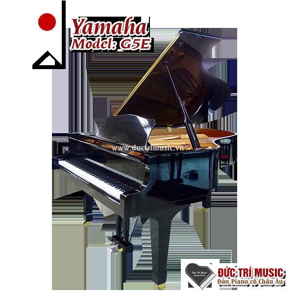 Nên mua đàn Piano cơ hay piano điện-3.png