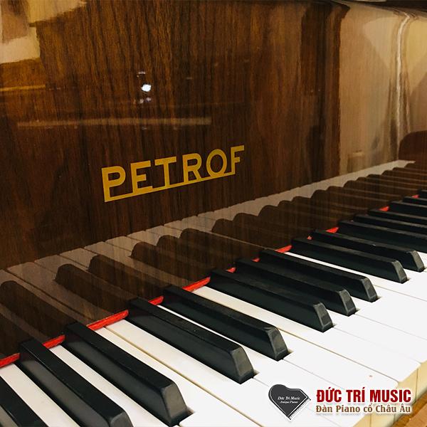Nhận bảo dưỡng sửa chữa đàn piano cơ1.jpg
