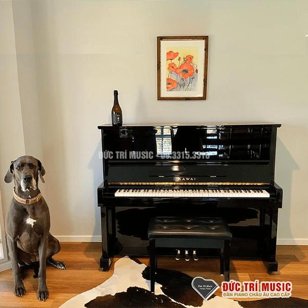 Những kinh nghiệm bạn nên biết khi mua đàn Piano-6.png