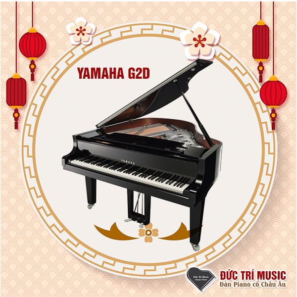 Những model đàn piano cơ thịnh hành nhất-2.jpg