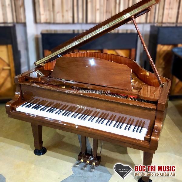 Top 05 Đàn Grand Piano Giá Rẻ Nhất Tại TP.HCM-2.jpg