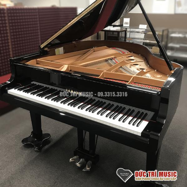 Top 05 Đàn Grand Piano Giá Rẻ Nhất Tại TP.HCM-5.png